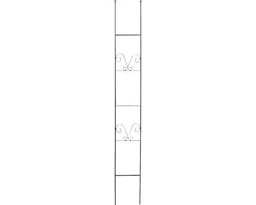 Zierspalier Lydie Stahl H 180 cm schwarz-gold