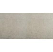 Feinsteinzeug Bodenfliese Brasilias hellgrau 60x120 cm rektifiziert