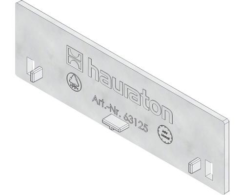 Hauraton Dachfix Resist Stirnwand Typ 45 aus korrosionsbeständigem Kunststoff silberfarben 115 x 35 mm
