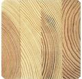 Brettschichtholz Fichte Sichtqualität 100 x 200 x 3000 mm