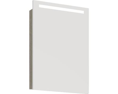 Spiegelschrank Scanbad Lotto 50x70x19 cm 1-türig grau