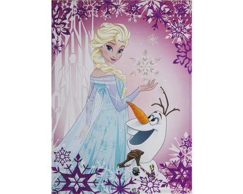 Leinwandbild Frozen Elsa & Olaf 50x70 cm