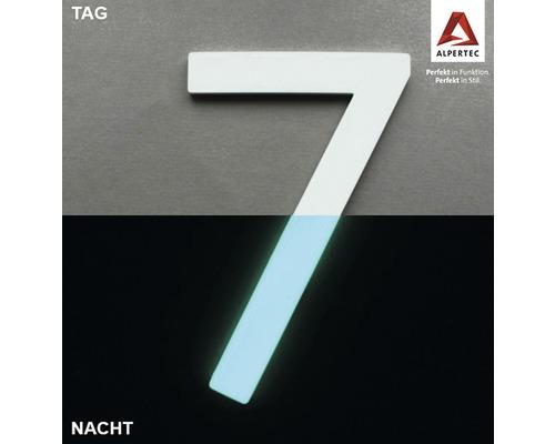 Hausnummer 7 Nightlux glow in the Dark selbstleuchtend